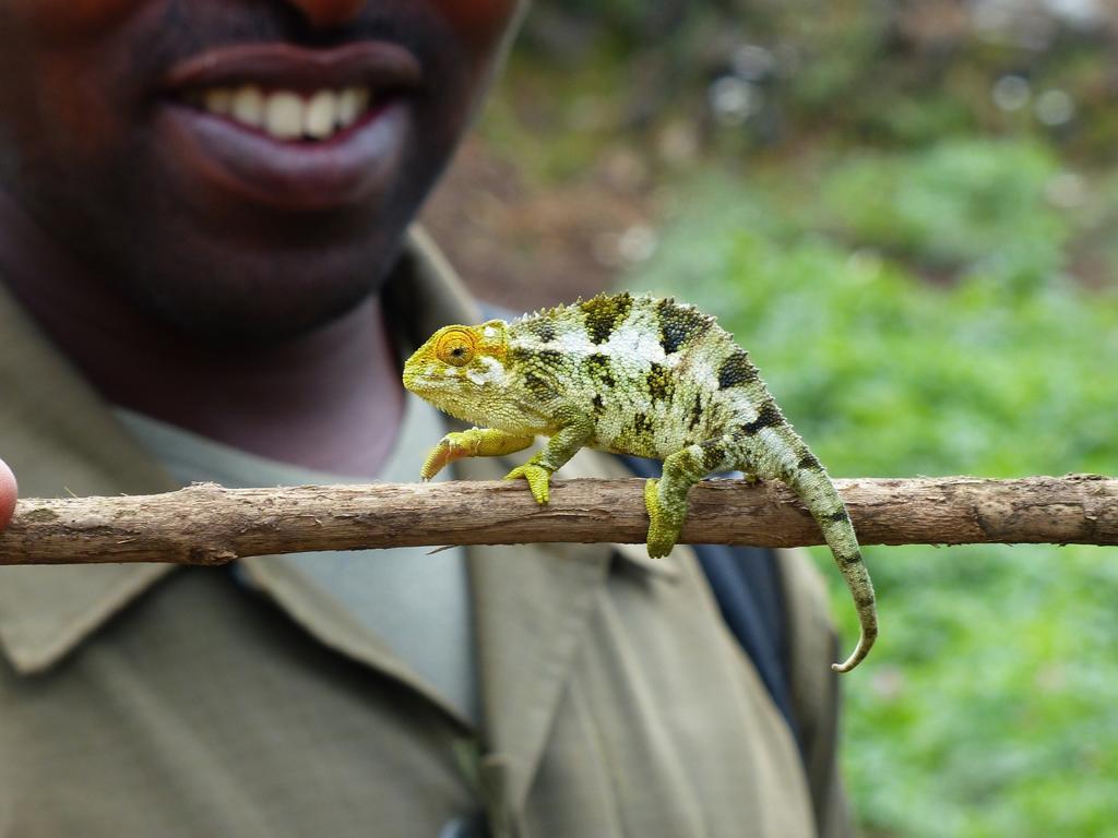 Reiseziele in Ruando - unsere anspruchsvollste Aufgabe